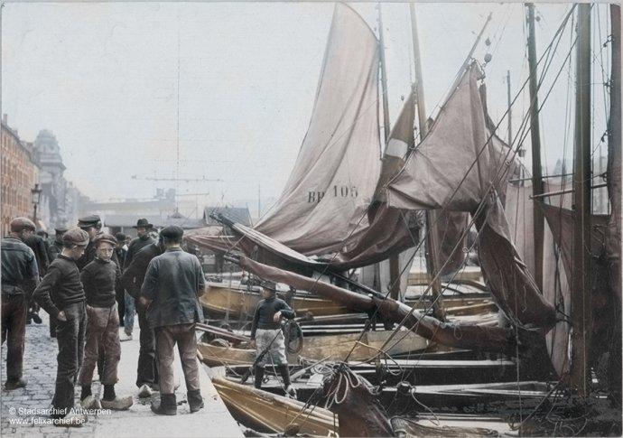 Antwerpen - Zuiderdokken - Waalsekaai - 1904